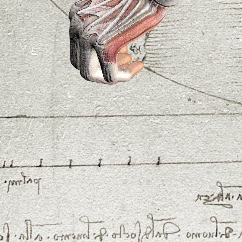 Leonardo 12