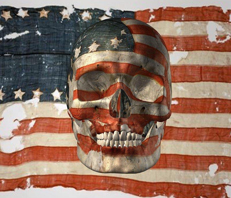 3D USA Skull